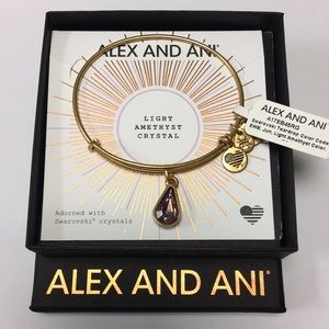 Alex and Ani Birthstone Bracelet June